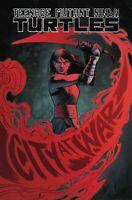 TEENAGE MUTANT NINJA TURTLES  #97 COVER A TMNT 1st JENNIKA in COSTUME 8/28