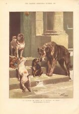 1881  ANTIQUE PRINT- A FRIEND IN NEED.. DOGS, COLOUR, JOHN CHARLTON
