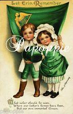 St Patrick's Day Fabric Block The Shamrock Let Erin Remember Irish Flag