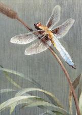 Dragonfly Tree-Free Greetings Sympathy Card