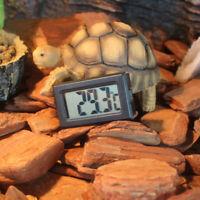 Thermomètre Digital pour Reptile Terrarium Sans Fil par Pile 0-50℃