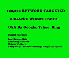 120,000 Keyword Targeted Organic Website Traffic USA, Europ By Google Yahoo Bing