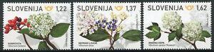 Slovenia Flowers Stamps 2021 MNH Laurustine Wayfaring Snowball Tree 3v set