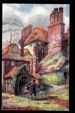 early Tuck signed Aveling Ivy House Gomshall Surrey UK postcard