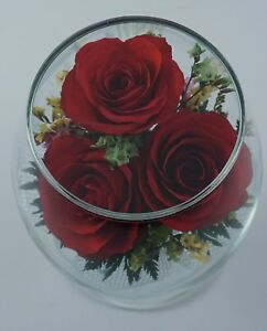 Red Roses Bouquet Preserved for Last Love. Perfect for the Valentines Gift