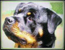 ROTTWEILER (DESIGN 2) ~ Counted Cross Stitch KIT #K581