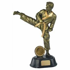 MALE KARATE MARTIAL ARTS Trophy FREE ENGRAVING
