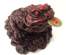 LARGE RED Feng Shui Money Frog /Money on coin Toad Attract Wealth and Luck