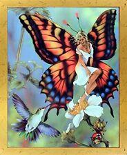 Flower Butterfly Fairy & Fantasy Scene Wall Decor Framed Picture Art Print 18x22