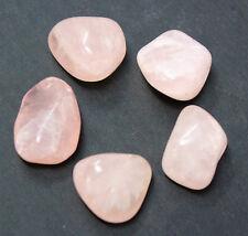 5 MEDIUM Rose Quartz Tumbled Stone Crystal Healing (Love Stone, Gemstone)