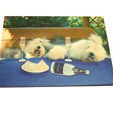 de rêves non-tissé Mat : oes Bobtail champagne saufgelage 44x69 cm