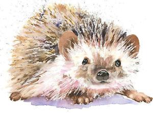 Fine Art Print of HEDGEHOG watercolour by HELEN APRIL ROSE   474
