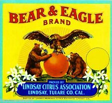 Lindsay Tulare County Grizzly Bear & Eagle Orange Citrus Fruit Crate Label Print