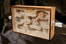 Ant Hybrid Nest Ant Farm Wood+Acrylic A6 Ant Formicarium Starter Beginner Kit