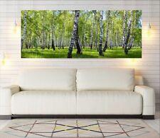 """Glasbild, Bild aus Glas, 125 x 50 cm Motiv """"0106_Birkenwald"""""""