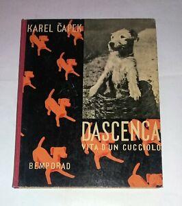 Dascenca vita d'un cucciolo - karel Capek - salani, 1935 Prima edizione