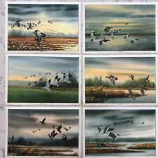 "1974 x 6 Waterfowl Placemats Box Sex 12"" x 17"" Edward Frak Paintings"