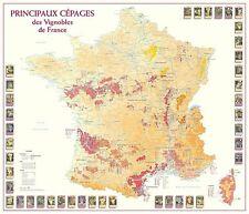 Carte des Principaux Cépages des Vignobles de France - POSTER