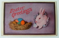 1909 EASTER GREETINGS POSTCARD RABBIT LOOKING A COLORED EGGS IN NEST BASKET #11m