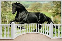 Huge 3D Balcony Majestic Horse Wall Sticker Mural Wallpaper S19