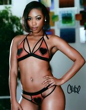 Chanell Heart In Her Bra & Panties Adult Model Signed 8x10 Photo COA Proof 1