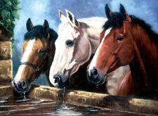 Malen nach Zahlen - 3 Pferde am Brunnen - Komplettset -  Größe ca. 30 cm x 39 cm