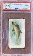 Porpoise 1910 T58 American Tobacco (Atc) Fish Series Psa 2 Good