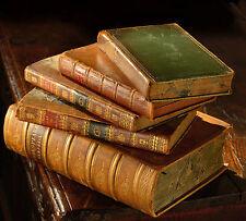 Learn Taxidermy 78 Rare Books Manuals on DVD - Mount Stuff Animals Birds Fish C5