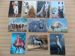 Swap playing cards    10  Modern Wides  Horses    #H20
