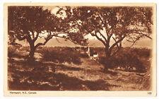 Hantsport Nova Scotia Canada Antique Postcard