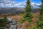 Spruce Knob West Virginia #1 Fall Color Mountain Landscape Photo Poster Print