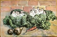 Multiple Baby 1907 Postcard: Babies & Cabbage - French Fantasy