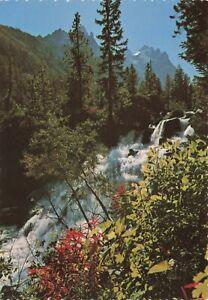 Postcard Ephemera Grand Teton National Park Glacial Falls WY Wyoming USA Water