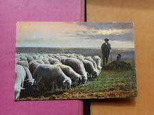 Kolorierte Sammler Motiv Ansichtskarten vor 1914 aus Deutschland