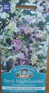 Mr Fothergills - Flower - Stock Night Scented Starlight Scentsation - 1000 Seeds