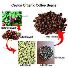 Ceylon Arabica Fresh Roasted Coffee Beans  FREE SHIP  from sri lanka
