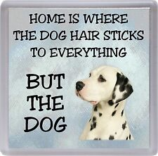 "Dalmatian Coaster ""Home is Where the Dog Hair Sticks ...."" by Starprint"
