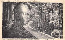 SAINT-PRIEST-LA-PRUGNE les bois de la madeleine forêt route de laprugne écrite 2