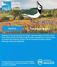 RSPB Pin BadgeFalklands Conservation king penguin 01209