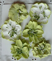 PISTACHIO GREEN & WHITE 2 ea 3 Styles = 6 PAPER Flowers 50-55mm across MH ConC