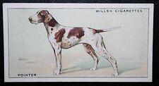 Pointer  Gun Dog     Original Vintage Illustrated Card  VGC