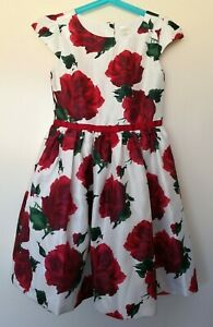 NWT Gymboree Fun and Fancy Watercolor Dress Girl Holiday Christmas Many Sizes