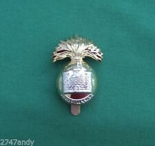 """Anodised """"The Royal Inniskilling Fusiliers""""~ 100% Genuine British Army Cap Badge"""