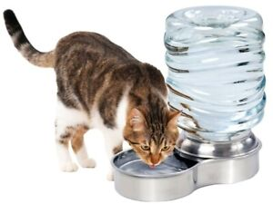 Stainless Steel Pet Waterer Cat or Small Dog Water Bowl - 1 Gallon Capacity