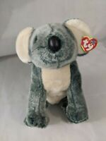 TY Beanie Baby /& BUDDY Fast Shipping EUCALYPTUS the Koala  Bear MWMT