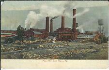 AZ-041 - Paper Mill, Lock Haven, Pennsylvania, 1907-1915 Golden Age Postcard