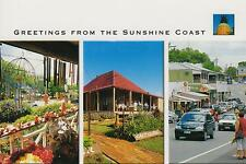 LARGE GREETINGS from the SUNSHINE COAST POSTCARD - MONTVILLE, EUMUNDI & BUDERIM