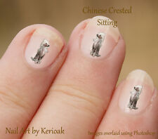 Chinese Crested Sitting,   24 Unique Designer Dog Nail Art Stickers Decals