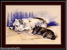 English Bulldog Scottish Terrier Dog Dogs Puppy Puppies Vintage Art Poster Print
