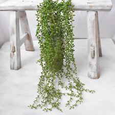 Artificial Plastic Succulent Green Plant Home Office Garden Decor Ornament